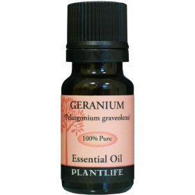 Geranium 100% pure essential oil - 10 ml