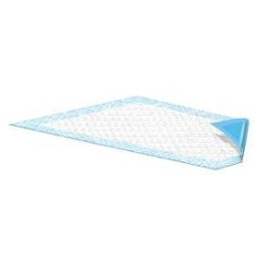 Champion blue disposable underpads (chux), 23 x 36, case/100 (4/25s)